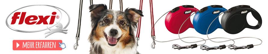 Leinen & Halsbänder Hund